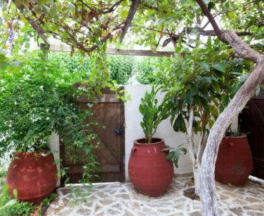 Spacious Villa in Crete Bali - Villa Klados - Garden 9